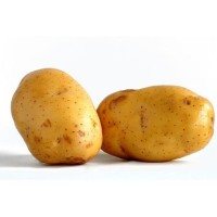 Aneka kentang Besar (isi 2) / sedang (isi 4) / rendang 500 gram