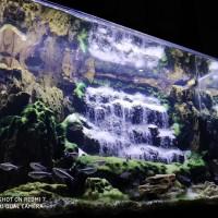 air terjun waterfall aquascape