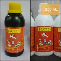 Bakteri starter Bacto+ 250ml untuk filter kolam dan aquarium