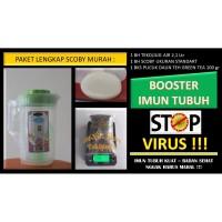 Paket Scoby Kombucha + Starter + Green Tea + Jug Plastik Lengkap Murah