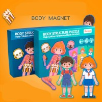 Mainan Edukakasi Anatomi Tubuh Manusia/ Mainan Montessori