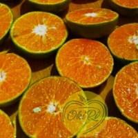 jeruk peras pontianak | yang memiliki rasa 80% manis 20% asam