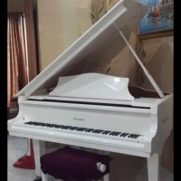 Baby Grand Piano Schumann BIG SALE