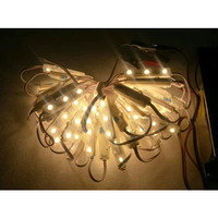 LAMPU LED MODUL VARIASI MOTOR MOBIL IP68 SMD 6816 1,5 WATT 12 VOLT