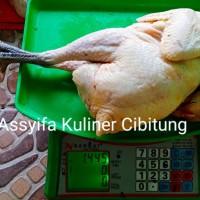 Ayam Kampung Super Premium 1.4-1.5 Kg
