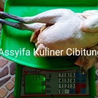 Ayam Kampung Super Premium 1.3-1.4 Kg