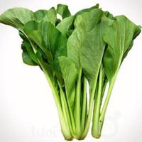 Sayur sawi caisim 1 kg sayuran hijau segar harga grosir murah