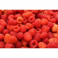 Frozen raspberry/raspberry beku 1 kg import IQF