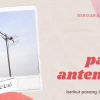 antena tv lokal ✓Antena tv digital Hd