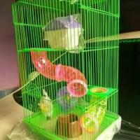 Kandang Hamster lengkap ayunan rumah tpt makn minum plosotan