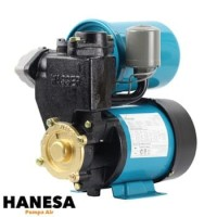 Wasser PW 139 EA Pompa Sumur Dangkal Otomatis
