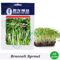 Benih-Bibit Microgreens/Sprout Brokoli (Known You Seed)