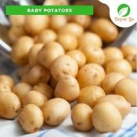 Baby Potatoes 1 Kg Kentang Baby Kecil Rendang Kari Sayur Ijo Segar