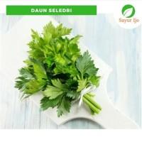 Daun Seledri 250 Gram Fresh Celery Leaves - Sayur Ijo Segar Murah