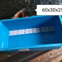 Bak fiber Ukur kecil p 60 cm x L 30 cm x T 25 cm