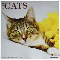 Cats 2016 Wall Calendar