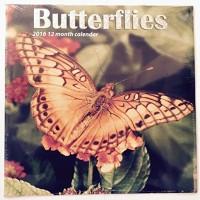 Butterflies 2016 12 Month Calendar