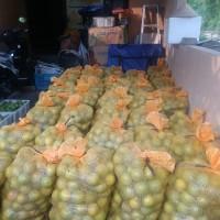 Jeruk Baby Jeruk Peras Manis Vitamin C