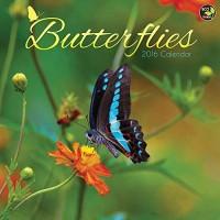 Butterflies Wall Calendar by TF Publishing 2016