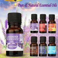 Fragrance Oil Aromatherapy Humidifier Essential Oil Diffuser