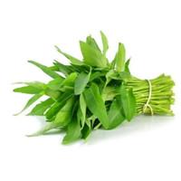 sayur kangkung