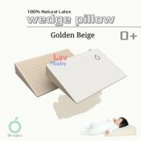 Dooglee Wedge Pillow bantal bayi santai after nursing menyusui - grey