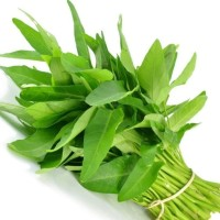 Sayur kangkung per ikat SAYURONLINECINERE fresh