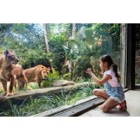 Bali Zoo Admission Dewasa