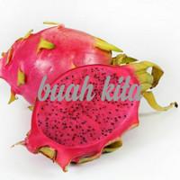 buah naga merah manis segar 1kg