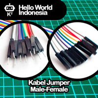Kabel Jumper 20cm Male-Female