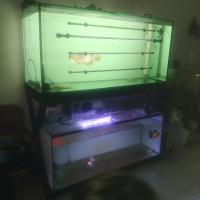 aquarium costum + meja + sump filter bawah