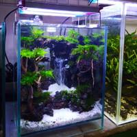 Aquascape design waterfall(air terjun)/nature/Dutcn style (nano tank)