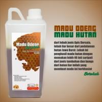 Madu Murni Odeng Madu asli hutan