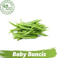 Baby Buncis / Baby Bean/ Buah Bumbu Sayur Masak by Pangan Export