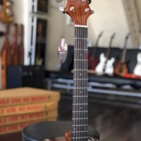 Gitar Akustik Samick Greg Bennet D-310 N Original (Free Tas)