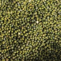 Kacang Hijau Super 1 Kg /Mung Bean