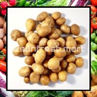 Baby Potato / Kentang Rendang / Kentang Kecil 1 Kg