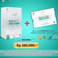 Papiluz Slimming Herbal Obat Pelangsing 70 Capsule Diet Original BPOM