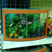aquarium kaca depan cembung P 38 x L 20 x T 26 Type S Diskon