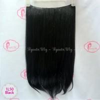 Hair Extension Clip Hairclip Long Straight Lurus Panjang BIG 1 LAYER