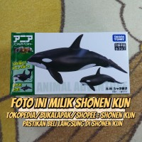 ANIA AL-08 MAINAN EDUKASI ANAK ORCA KILLER WHALE HEWAN LAUT ORI