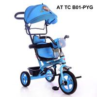Tricycle Atlantis PYG B01