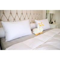 Pillow / Bantal King 100% Down