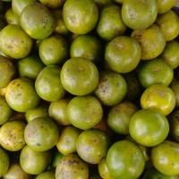 buah jeruk peras Pontianak manis premium 1kg murah