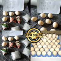 NEW 5 telur ayam philipin philipine 313 Berkualitas