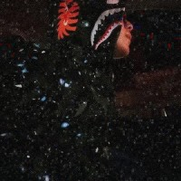 Dijual Terlaris - hoodie bape shark space galaxi kw BUKAN KALENG Mura