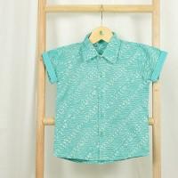 Jatayu Batik Shirt
