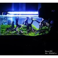 Full Set Aquarium Aquascape 120cm