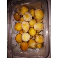 250 gr BOX Kurma Muda Rhutob Matang Frozen