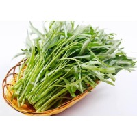 Sayur Kangkung 1 Ikat Fresh